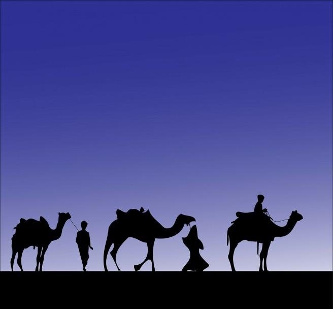 camel-316894_1280