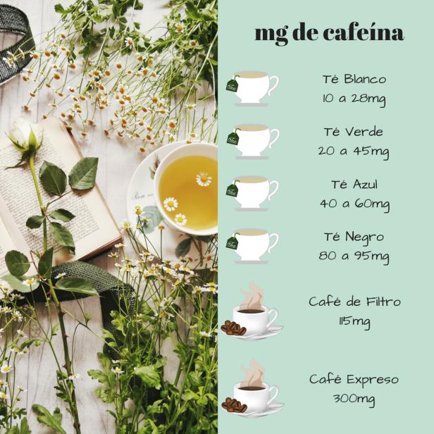 mg de cafeína - WordPress.png